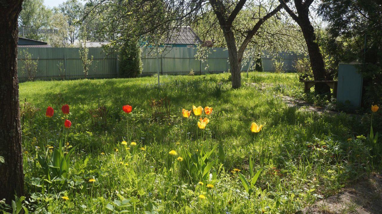 Земельный участок летом